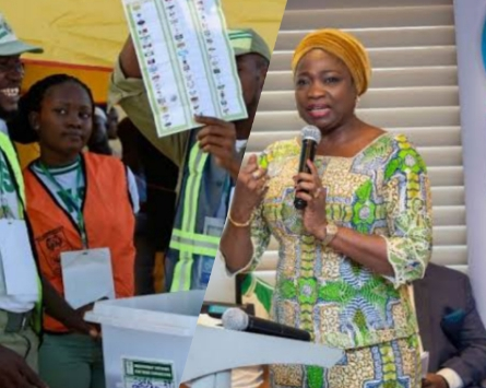 June 12: Stakeholders Make Case for More Participation Of Nigerian Diasporans In Democratic Process